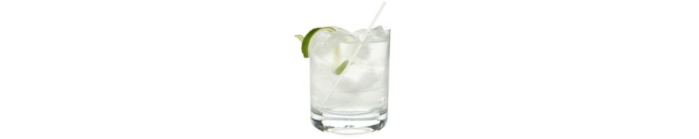 Destilados-Gin